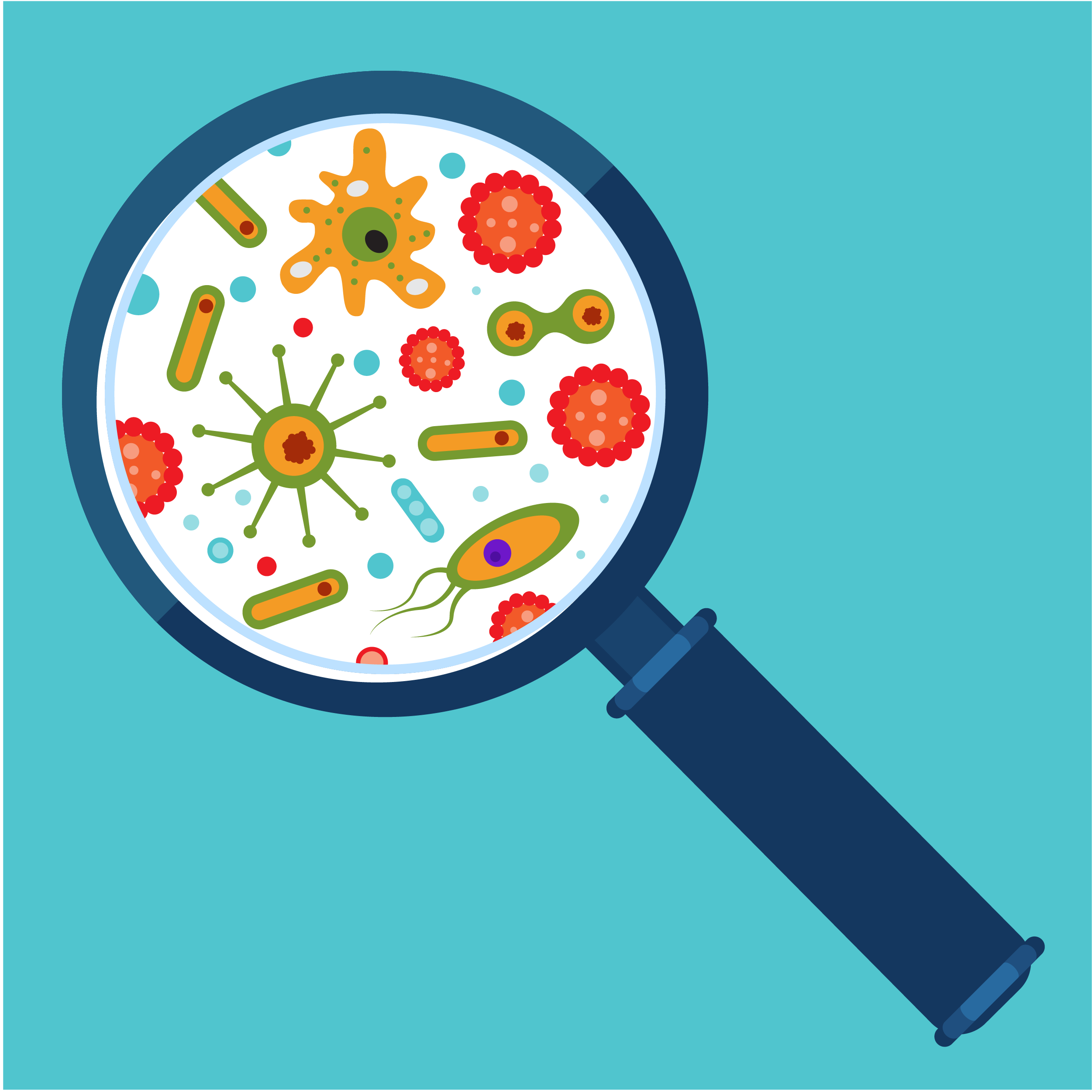 Illustration of microbes under a magnifying glass